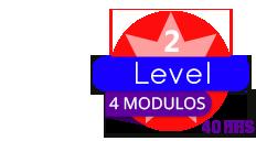 level-2_V2